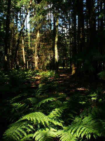 Natuurbeleving, ook tijdens pauzes bij natuurwerk