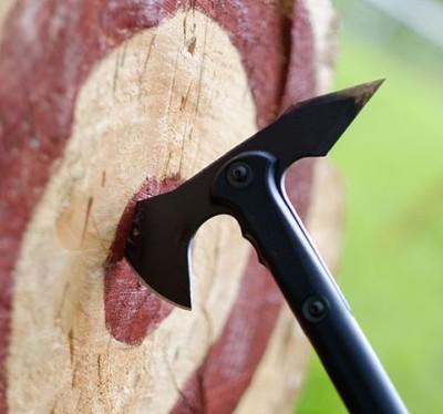 Werpbijl - symbolisch voor organisatie en veiligheid (schot in de roos of risico)