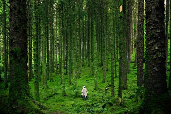 Natuurbeleving met al je zintuigen